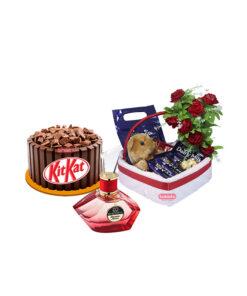 chocolate cake combos by bakisto.pk